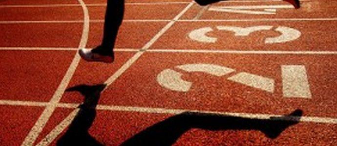 HP Director Goodman gives World Champs team a pass mark