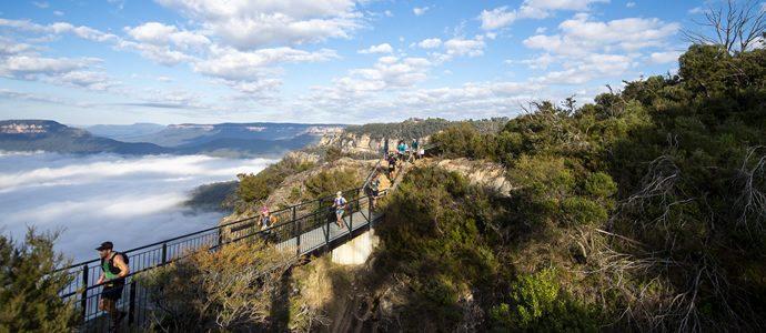 Ultra Trail Australia - Swierc & Lamprecht win